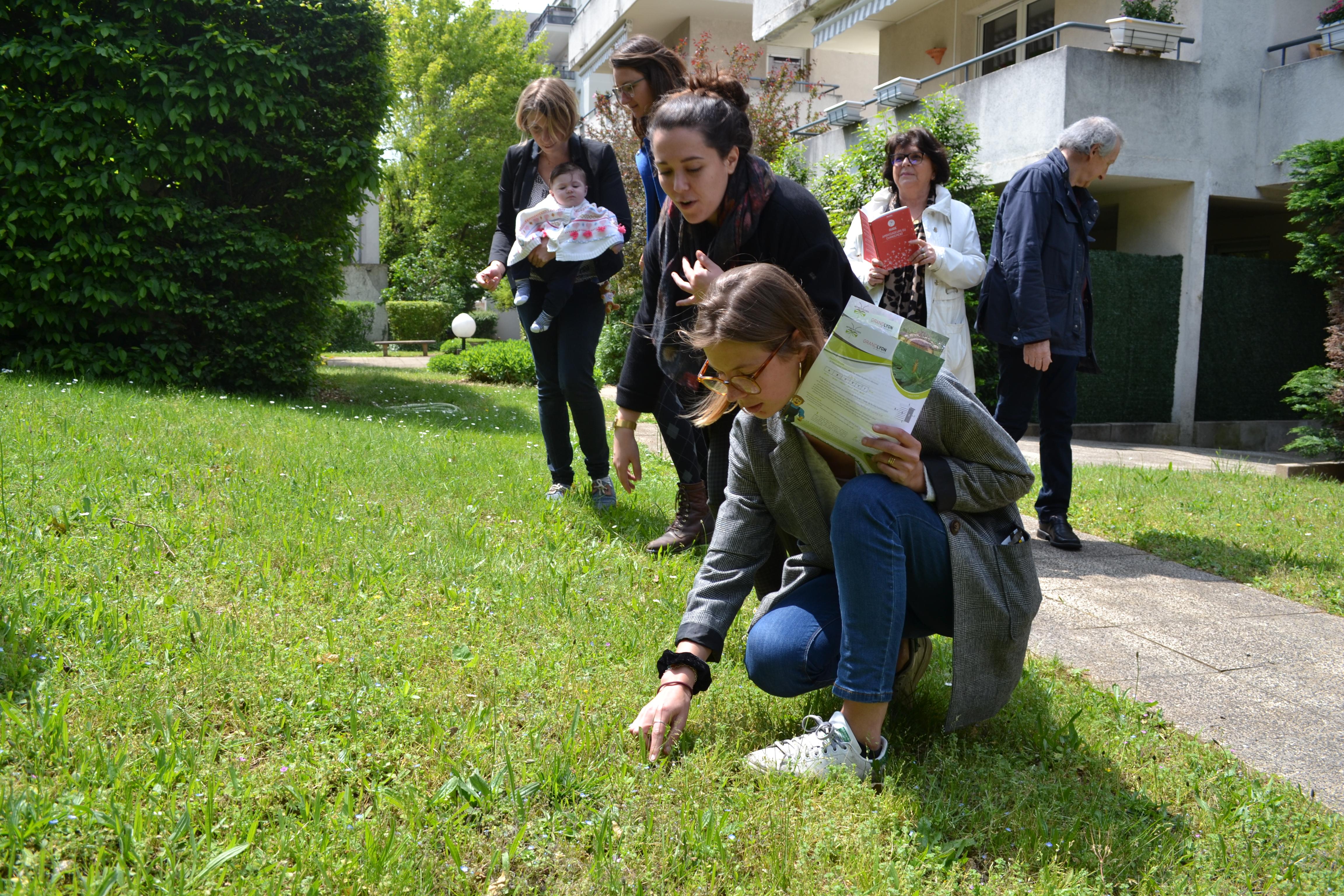 Inviter la biodiversité dans son jardin d'immeuble